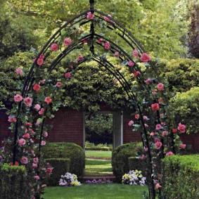 Плети роз на опорах из металлического проката