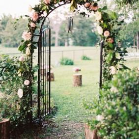 Узкая арка с плетистой розой гибридного сорта