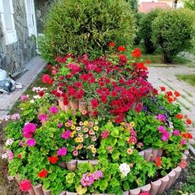 Высокая клумба с цветущей геранью