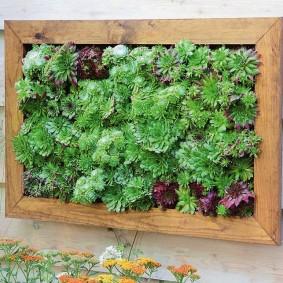 Зеленое панно на деревянной стене сарая