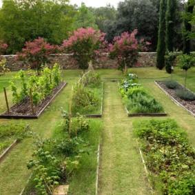 Прямоугольные грядки с овощными культурами