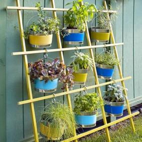 Комнатные растения на вертикальной клумбе