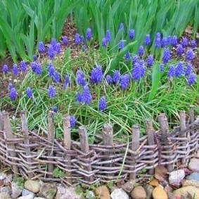 Синие цветы на плетенной клумбе