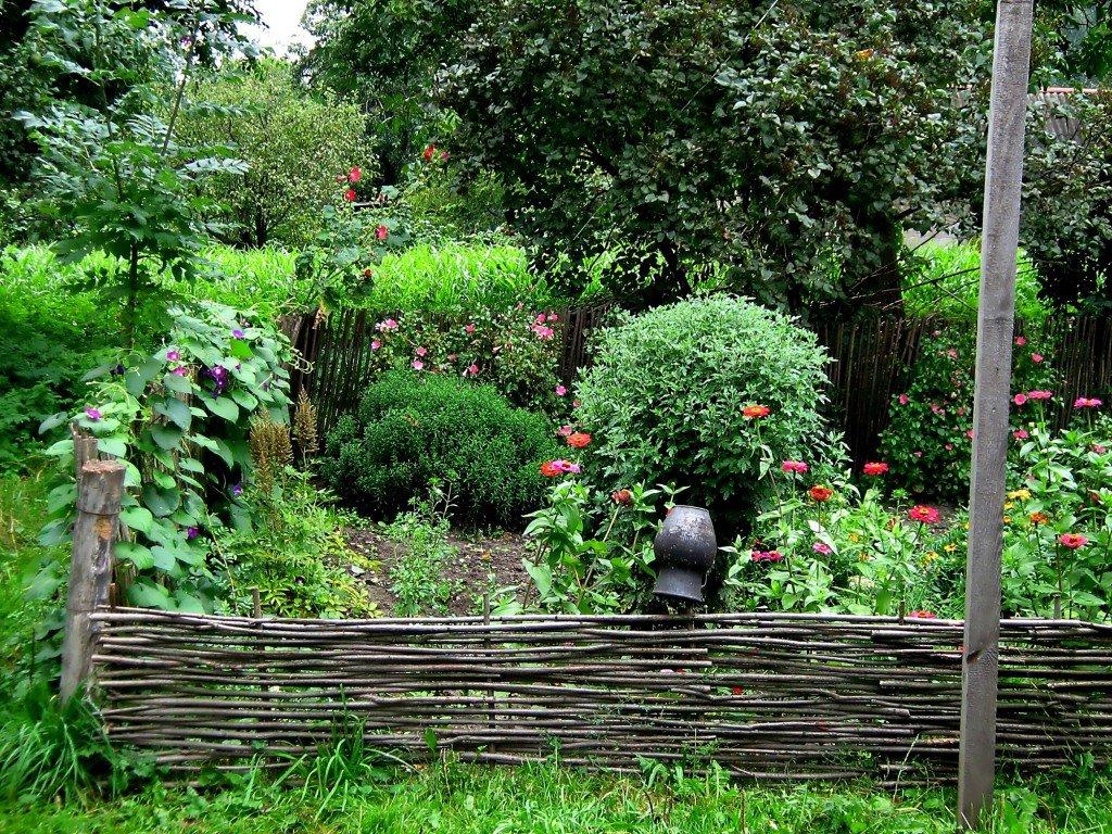 изюминки нашего сада для дачи фото макияже для