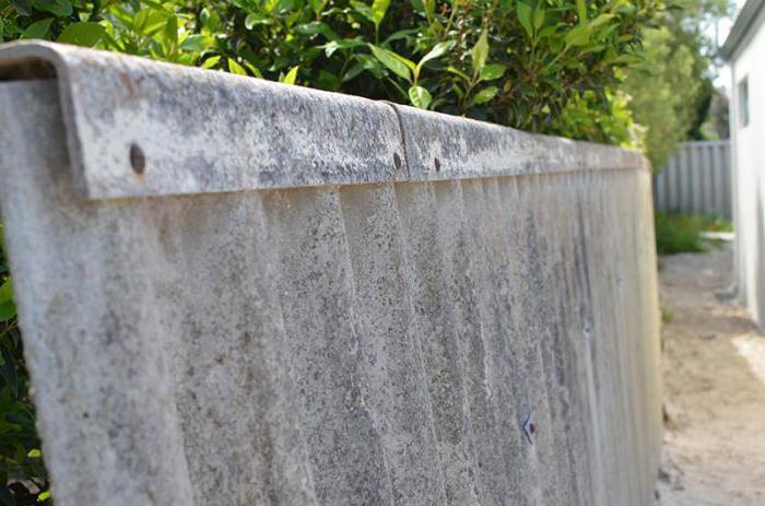 вода забор из плоского шифера фото варианты рыбу разными способами