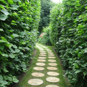 Садовая тропинка из бетонной плитки круглой формы