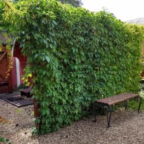 Садовая лавочка на кованном каркасе