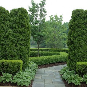 Бордюры и изгороди в ландшафтном дизайне