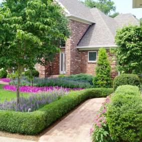 Зеленые бордюрчики вдоль садовых клумб