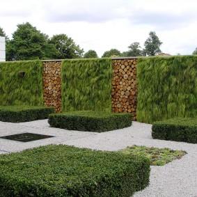 Садовый забор из растений и деревянных спилов