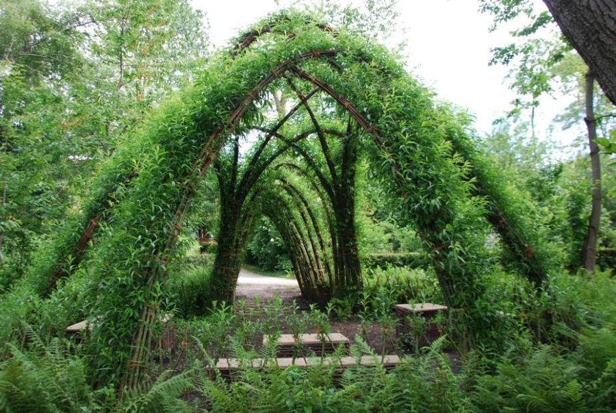 Беседка из живой ивы в глубине садового участка
