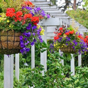кашпо в саду идеи