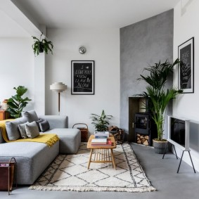комната с диваном варианты фото