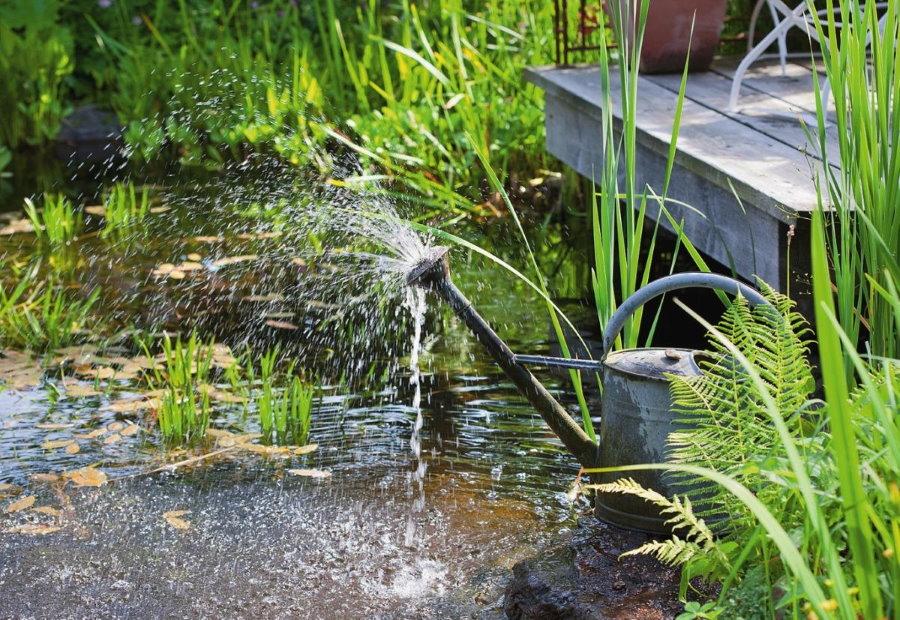 Мини-фонтан из садовой лейки