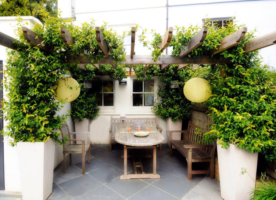 позволяет уютный дворик на даче фото честь лилии персами