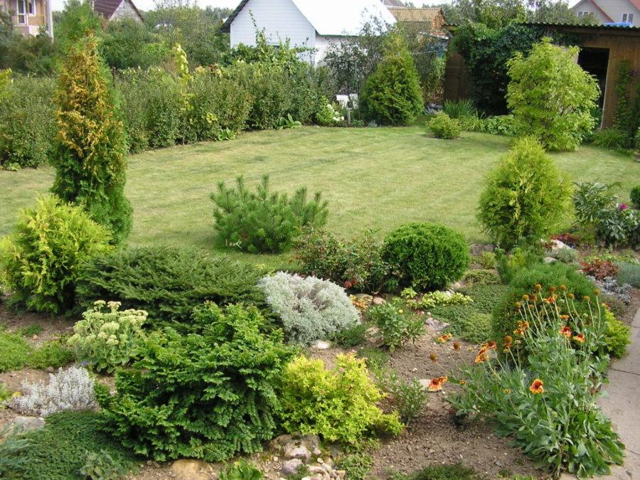 Озеленение территории дачного участка небольшой площади