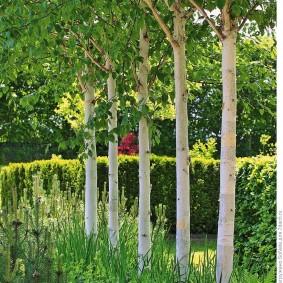 обустройство маленького сада фото декор