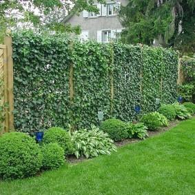 обустройство маленького сада фото оформления