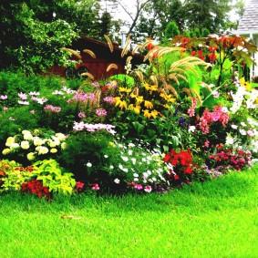 обустройство маленького сада фото дизайна