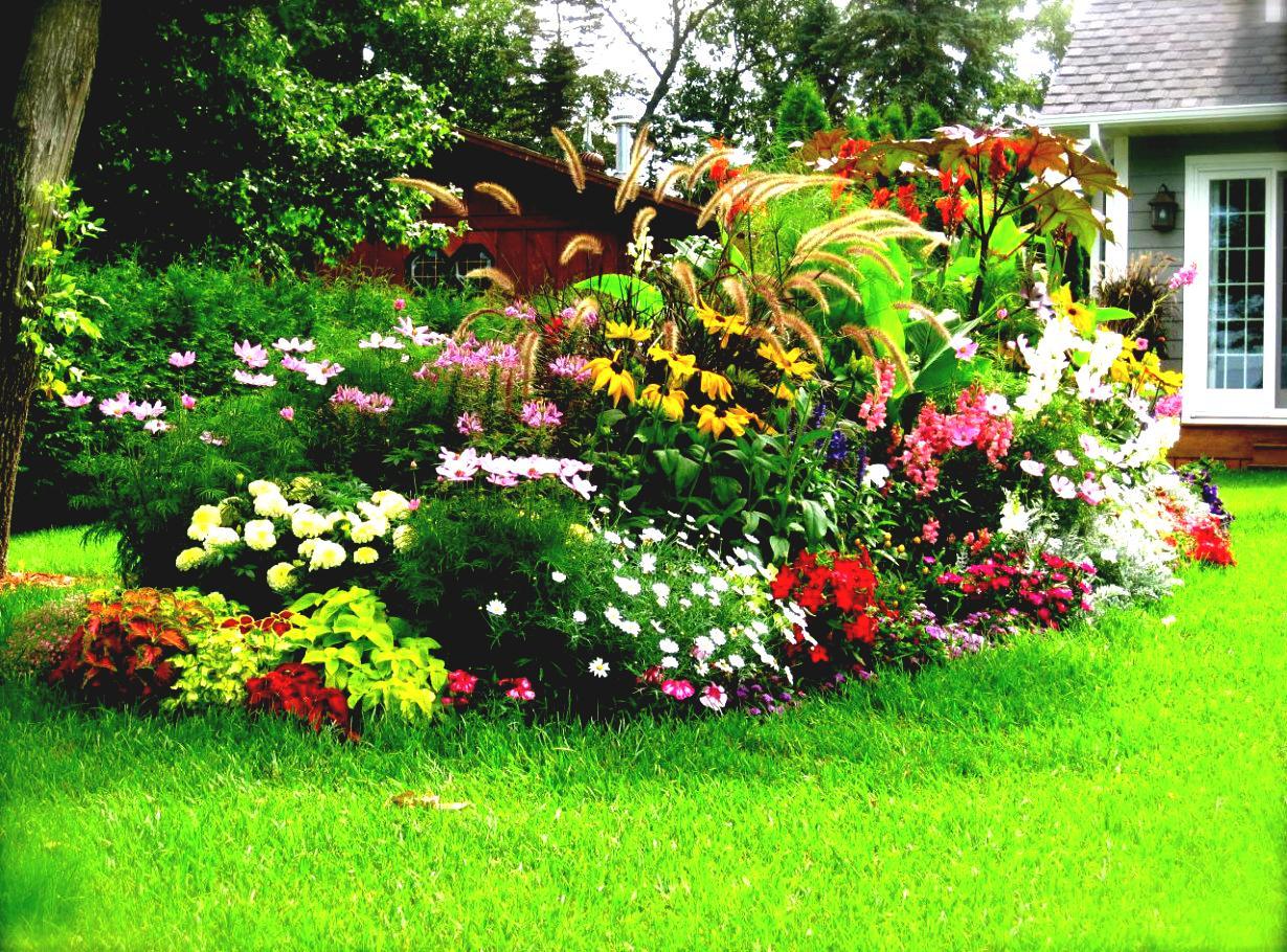 домашний дизайн сада цветами своими руками фото школьника обустраиваем