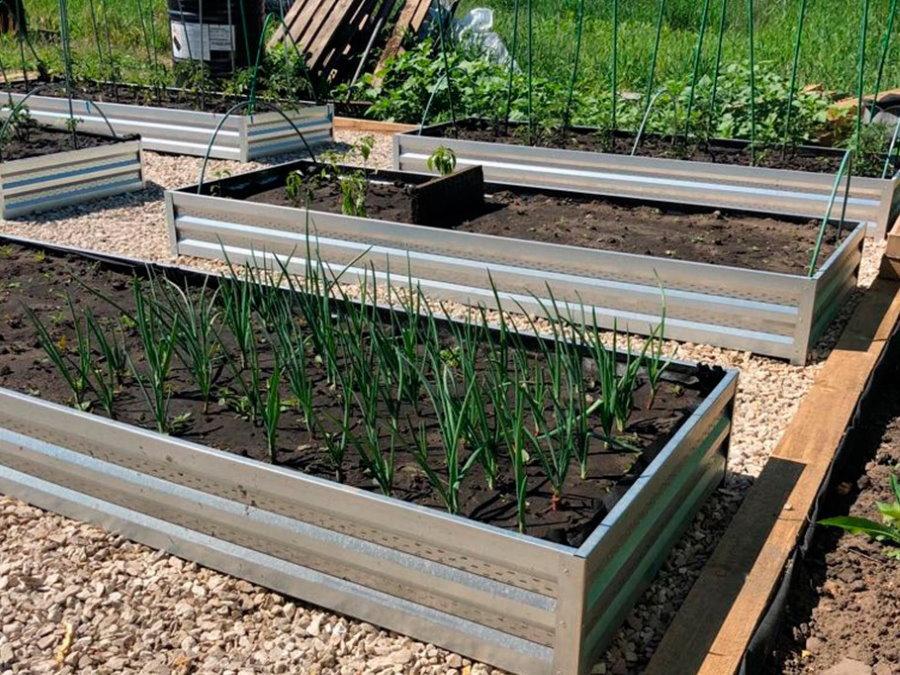 Оцинкованные грядки для лука и овощей