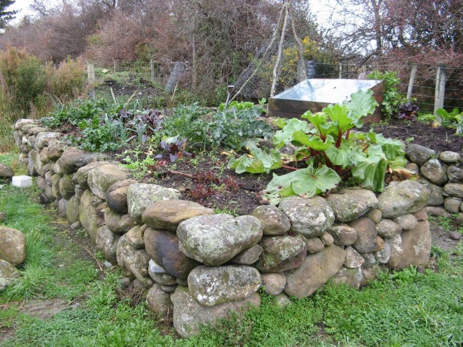 Каменная грядка с овощами на садовом участке