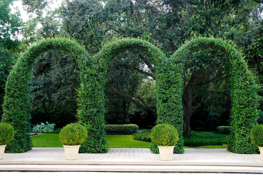 Садовые арки на берегу искусственного водоема