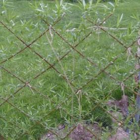 Простое плетение живой изгороди из ивы
