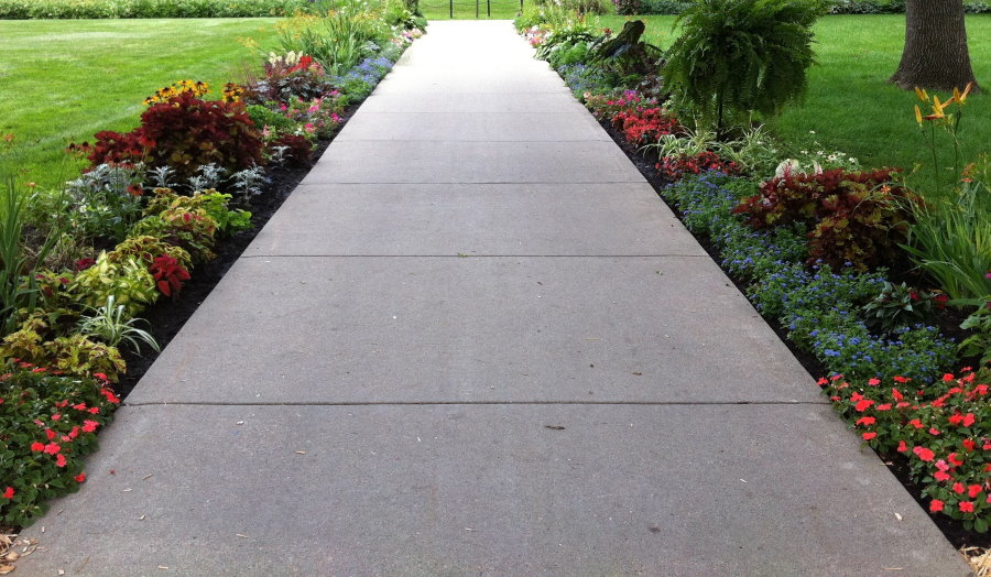 Широкая дорожка из монолитного бетона между цветами