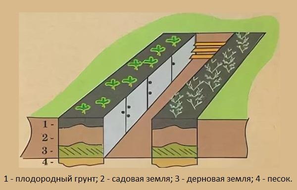 Схема грядки с дренажным слоем для болотистой местности