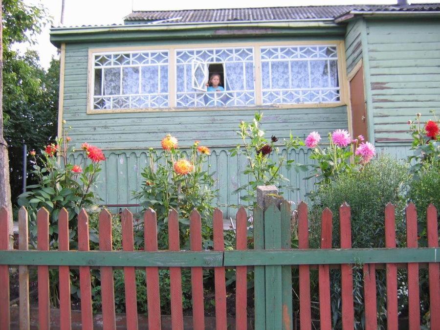 Старый забор из деревянного штакетника