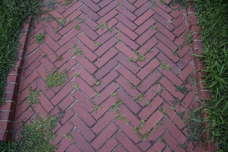 Укладка елочкой тротуарной плитки в саду