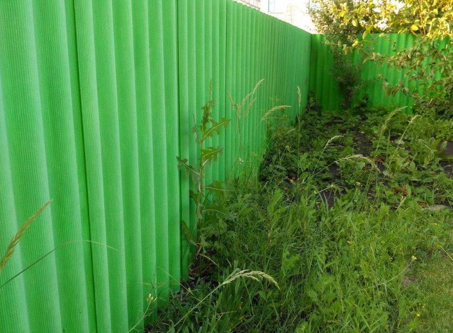 Зеленый забор из волнового шифера на даче