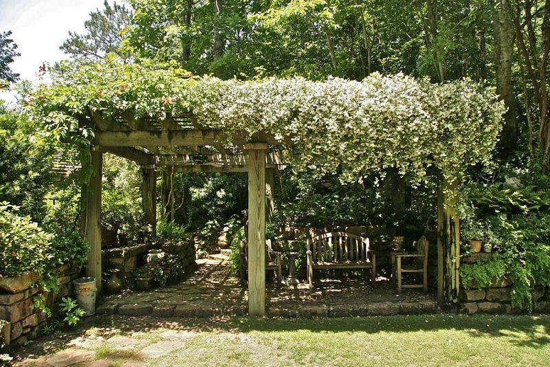 Место для отдыха на даче с жасмином на перголе