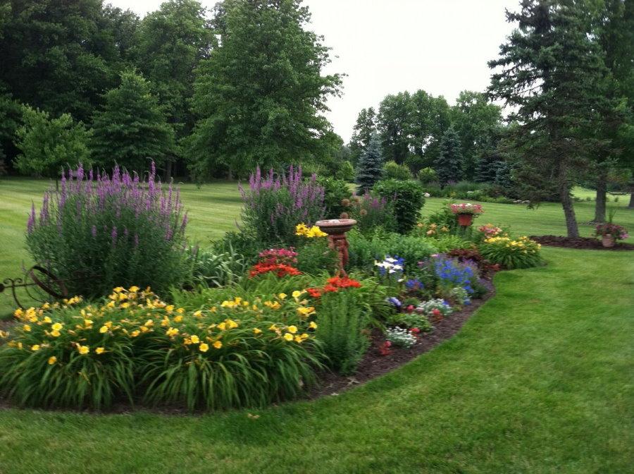 Фото цветочной клумбы в саду английского стиля