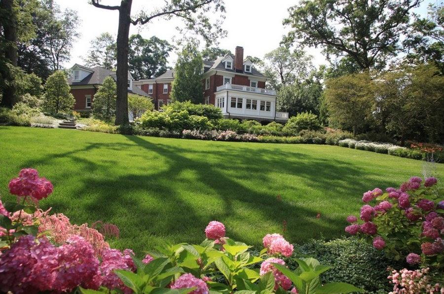 Аккуратный газон в английском стиле
