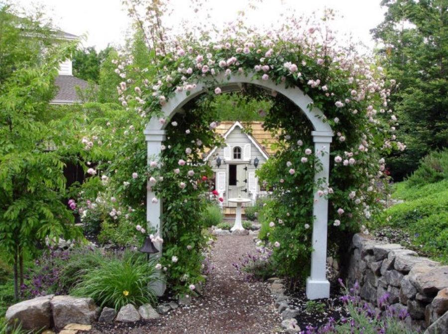Белая арка из дерева с цветущими клематисами