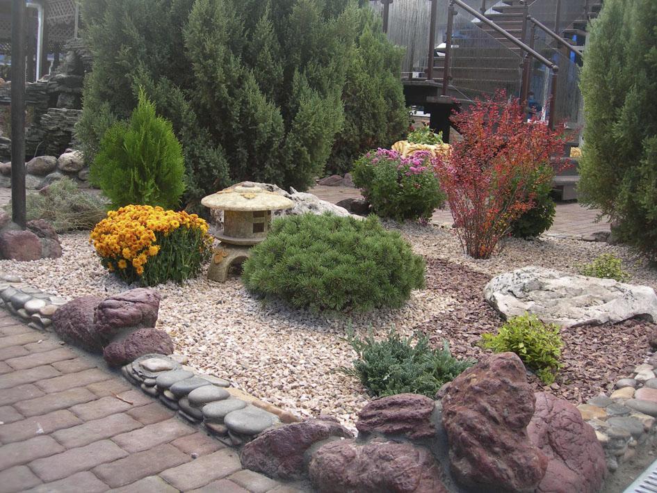 Каменистая клумба с барбарисом и другими растениями