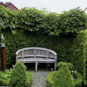 Деревянная скамейка в укромном уголку сада