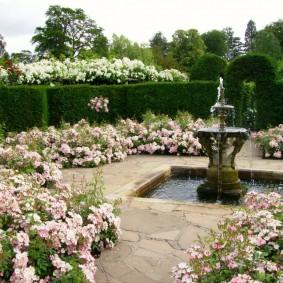 Каменный фонтан в окружении цветущих растений