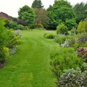 Зеленая лужайка в саду пейзажного стиля