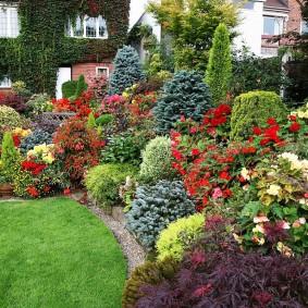 Садовая композиция с яркими цветами