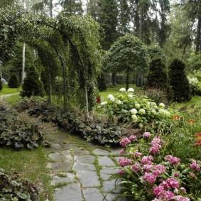 Садовая арка с вьющимися растениями