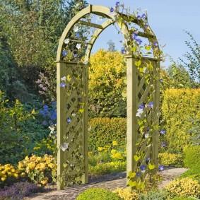 Сиреневые цветки на деревянной арке