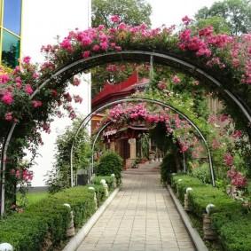 Широкие арки с розами над дорожкой к дому