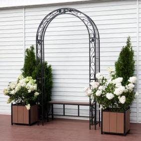 Белые розы в квадратных контейнерах