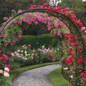 Крутой изгиб садовой дорожки из гравия