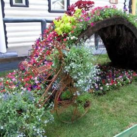 Низкая арка с цветущими растениями