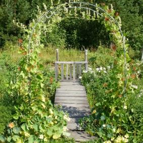 Деревянная дорожка на садовом участке