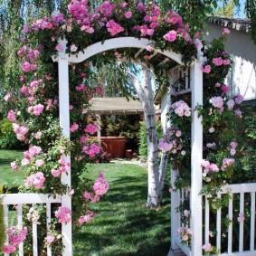 Крупные бутоны на ветках розы